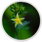 Starflower Round Beach Towel