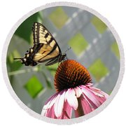 Tiger Swallowtail On Coneflower Round Beach Towel