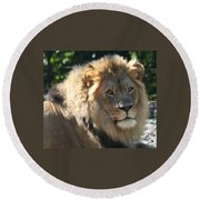 The King Of The Jungle Round Beach Towel