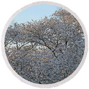 The Simple Elegance Of Cherry Blossom Trees Round Beach Towel