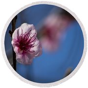 The Spring Is Coming Round Beach Towel