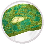 Tomato Chloroplast, Tem Round Beach Towel