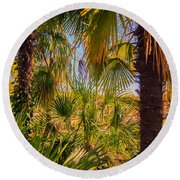Tropical Forest Palm Trees In Sunlight Round Beach Towel