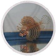 Tropical Lion Fish Round Beach Towel