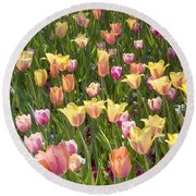 Tulips At Dallas Arboretum V92 Round Beach Towel