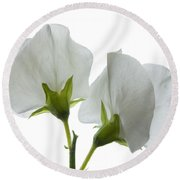 Two White Sweet Peas 2 Round Beach Towel