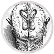 Vesalius: Brain, 1543 Round Beach Towel