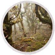 Virgin Mountain Rainforest Of Marlborough Nz Round Beach Towel