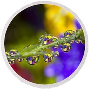 Water Drops On A Flower Stem Round Beach Towel