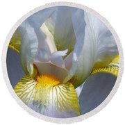 White And Yellow Iris 2 Round Beach Towel