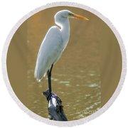 Magnolia White Heron Round Beach Towel