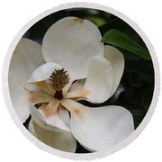 White Magnolia  Round Beach Towel