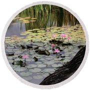 Wild Water Lilies In The River Round Beach Towel