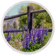 Wildflowers On The Fence Round Beach Towel