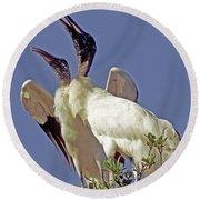 Wood Stork Courtship Display Round Beach Towel