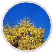 Yellow Autumn Tree Round Beach Towel