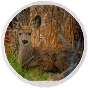Young Mulie Round Beach Towel