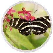 Zebra Longwing Butterfly Round Beach Towel