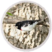 Rose Breasted Grosbeak Round Beach Towel