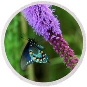 243 Butterfly Round Beach Towel