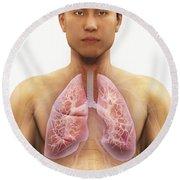 The Respiratory System Round Beach Towel