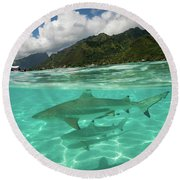 Over Under, Half Water Half Land Round Beach Towel by Panoramic Images