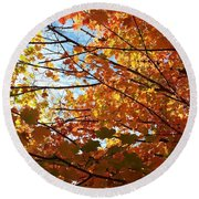 Fall Explosion Of Color Round Beach Towel