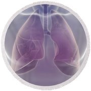 The Respiratory System Round Beach Towel