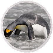 King Penguin Round Beach Towel