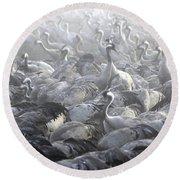 Flock Of Common Crane  Round Beach Towel