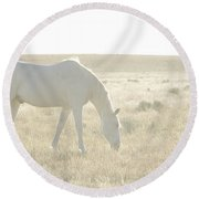 A White Mustang Feeds On Dry Grass Fields Of Arizona Round Beach Towel