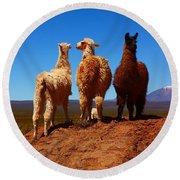 3 Amigos Round Beach Towel by FireFlux Studios