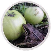 3 Apples And A Frog Round Beach Towel