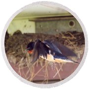 Barn Swallows Constructing Their Nest Round Beach Towel by J McCombie