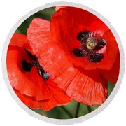 Beautiful Poppies 2 Round Beach Towel