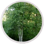 3 Birch Trees On A Hill Round Beach Towel