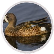 Bluewing Teal Round Beach Towel