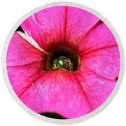 Calibrachoa Named Colorburst Rose Round Beach Towel