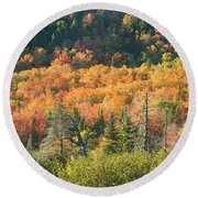 Colorful Fall Forest Near Rangeley Maine Round Beach Towel