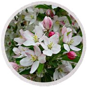Crabapple Blossoms Round Beach Towel
