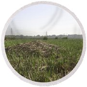 Cut And Dried Grass Along With Growing Grass Round Beach Towel