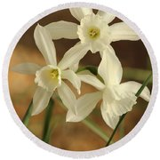 3 Daffodils Round Beach Towel