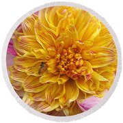 Dahlia Named Lambada Round Beach Towel
