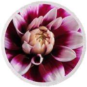 Dahlia Named Mystery Day Round Beach Towel