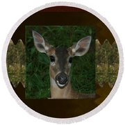 Deer Wild Animal Portrait For Wild Life Fan From Navinjoshi Costa Rica Collection Round Beach Towel