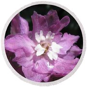 Delphinium Named Magic Fountains Lilac Pink Round Beach Towel