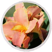 Dwarf Canna Lily Named Corsica Round Beach Towel by J McCombie