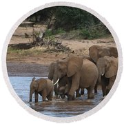 Elephants Crossing The River Round Beach Towel