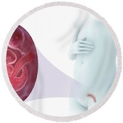 Embryo Development Week 6 Round Beach Towel