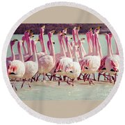 Flamingos On Lake In Andes Round Beach Towel